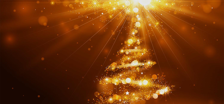 Kerstbomen voor bedrijven in Leimuiden